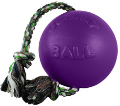 Romp-n-Roll Ball PURPLE