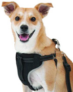 Ultimate Travel Harness Black LARGE