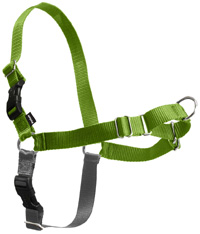 Easy Walk Harness Apple/Black SMALL