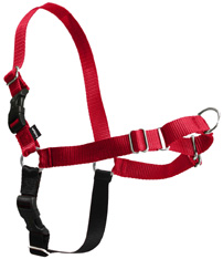 Easy Walk Harness Red/Black SMALL
