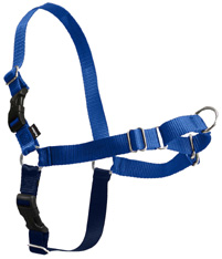 Easy Walk Harness Royal Blue/Navy PETITE