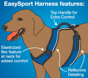 Easy Sport Harness